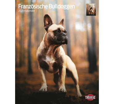 Falinaptár 2021 Francia Bulldog