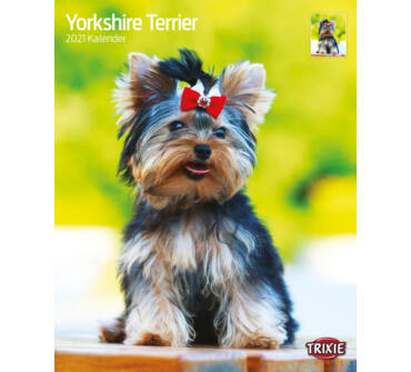 Falinaptár 2021 Yorkshire Terrier