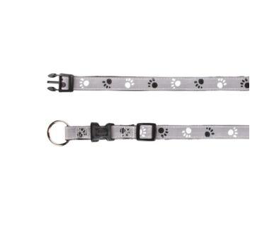 Silver Reflect trx12223
