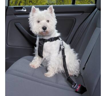 Kutya biztonsági öv+hám XS trx1288