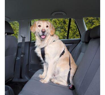 Kutya biztonsági öv+hám XL trx1293